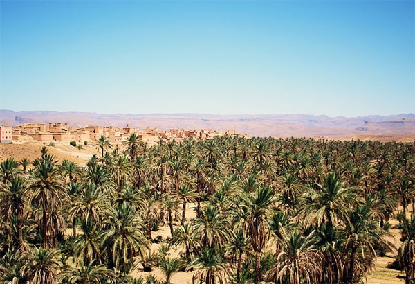 Marrakech to Sahara desert Tours