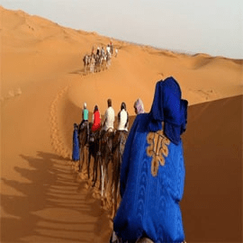 Morocco premium Tours and Excursions